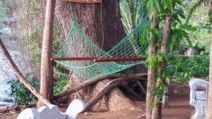 Mereiyans vil Eco Cottage, Vily  Wawinna - big - 10
