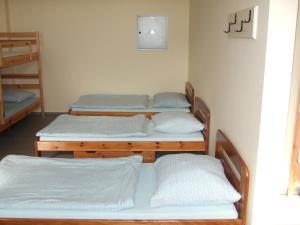 Rooms Vila Jurka, Хостелы  Križevci pri Ljutomeru - big - 66