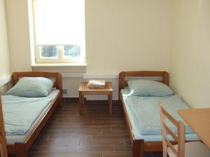 Rooms Vila Jurka, Хостелы  Križevci pri Ljutomeru - big - 43