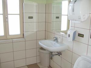 Rooms Vila Jurka, Хостелы  Križevci pri Ljutomeru - big - 85