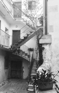 Casa Cristina, Apartments  Siracusa - big - 14