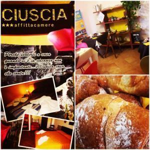Ciuscia Affittacamere - AbcAlberghi.com