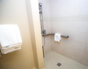 King Room with City View - Hearing and Disability Access with Roll In Shower