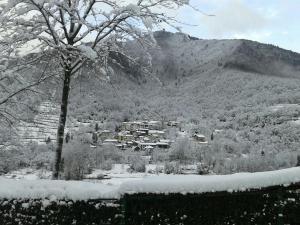 Casa Sittaro, Holiday homes  Grimacco - big - 6