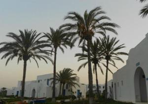Jerba Sun Club, Hotely  Mezraya - big - 10