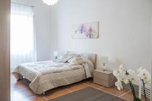 Pisa Centrum Modern Apartments - AbcAlberghi.com
