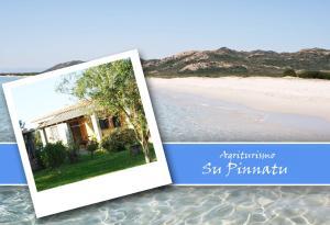 Agriturismo Su Pinnatu - AbcAlberghi.com