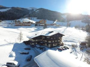 Ski in Ski out Hotel Unterellmau, Hotely  Saalbach Hinterglemm - big - 1