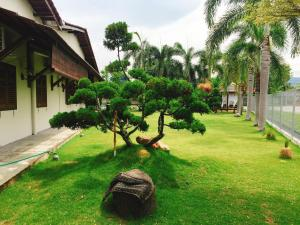 The Wood Homestay