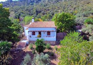 Casas Rurales Los Algarrobales, Resorts  El Gastor - big - 9