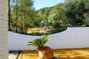 Casas Rurales Los Algarrobales, Resorts  El Gastor - big - 55