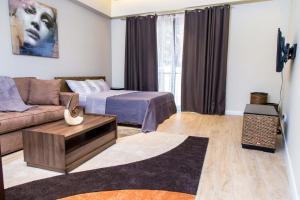 PLS Apartments - Cantonments, Appartamenti  Accra - big - 102