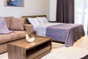 PLS Apartments - Cantonments, Appartamenti  Accra - big - 103