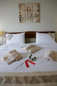Hotel Rodovoli, Hotels  Konitsa - big - 45