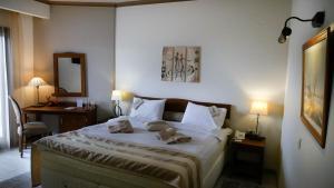 Hotel Rodovoli, Hotels  Konitsa - big - 46
