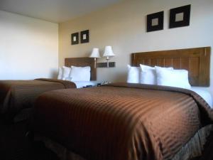 特别优惠 - 带2张大号床的大号床间