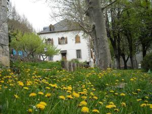 Albergue Quinta Vista Alegre