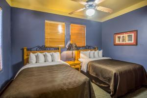 Clarion Inn & Suites Mission, Hotels  Mission - big - 9