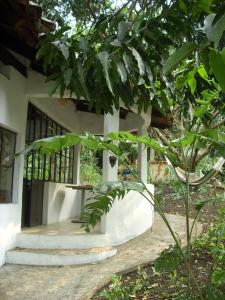 Aldea Ecoturismo, Hotels  Jalcomulco - big - 64