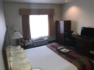 King Room with Roll in Shower - Disability Access