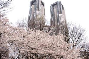Apartment in Shinjuku 868, Apartments  Tokyo - big - 23