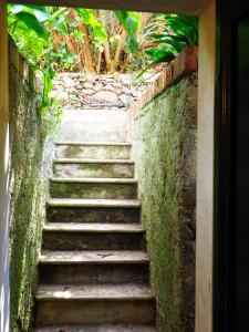 Giardinettu Garden Apartment, Apartmanok  Vernazza - big - 5