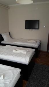 Vila As Lux, Affittacamere  Zrenjanin - big - 10