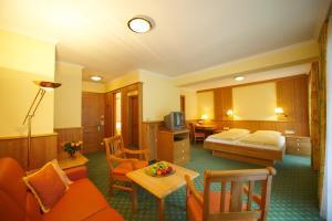 Hotel Martin, Hotely  Ramsau am Dachstein - big - 20