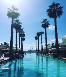 Three Bedroom Apartment - The Palm - Dubai