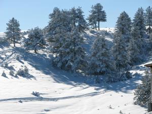 Chalet Four Season, Horské chaty  Zlatibor - big - 48