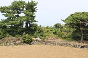 Jeju Feel House, Penziony  Jeju - big - 102
