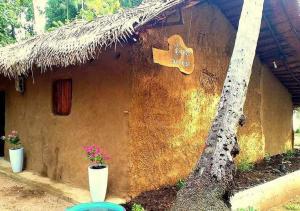 Mereiyans vil Eco Cottage, Vily  Wawinna - big - 8