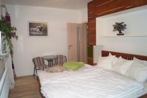 Apartments Klinovec, Apartmány  Loučná pod Klínovcem - big - 60