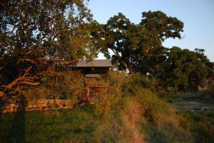 Aruba Mara Camp and Safaris