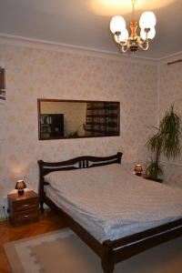 Hrushevsky Apartment Near The Theater, Apartmanok  Ternopil - big - 4