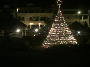 Villa en Marinaterra, Виллы  San Carlos - big - 9