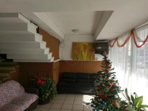 Отель Hotel Roma, Чиуауа