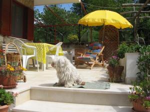 Garden House Villa Lilia - AbcAlberghi.com
