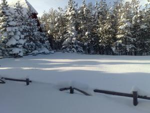 Chalet Four Season, Horské chaty  Zlatibor - big - 49