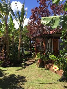 Cabanas Hinariru Nui, Lodge  Hanga Roa - big - 9