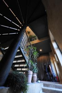 Guest Accommodation Zak, Affittacamere  Novi Sad - big - 26