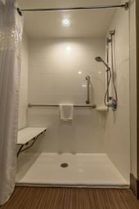 King Room Mobility/Hearing Accessible  with Shower