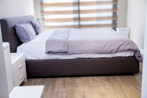 PLS Apartments - Cantonments, Appartamenti  Accra - big - 141