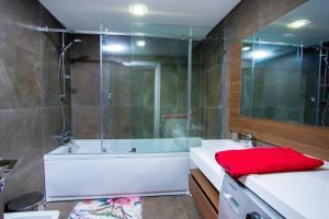 PLS Apartments - Cantonments, Appartamenti  Accra - big - 127