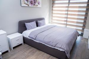 PLS Apartments - Cantonments, Appartamenti  Accra - big - 117