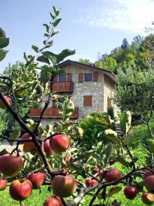 Casa Martina B&B - AbcAlberghi.com