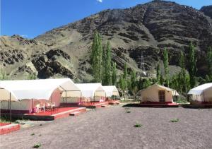 Camp Delight Ullay, Kempy  Saspul Gömpa - big - 15