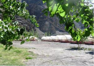 Camp Delight Ullay, Kempy  Saspul Gömpa - big - 6