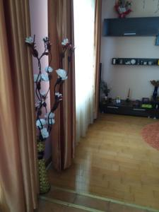 Casa Irina, Ville  Piatra Neamţ - big - 109