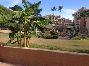 Villa en Marinaterra, Виллы  San Carlos - big - 7